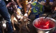 TORINO IN MANO ALLA MAFIA NIGERIANA: VOODOO, DROGA E PROSTITUZIONE