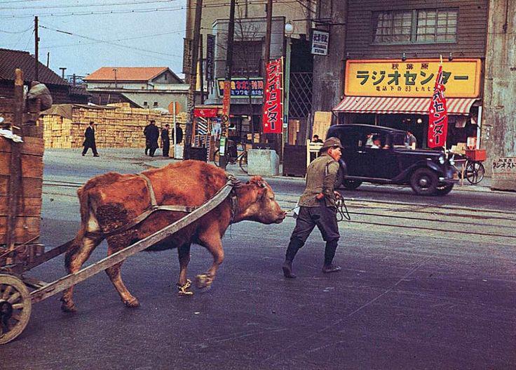 Akihabara 1950