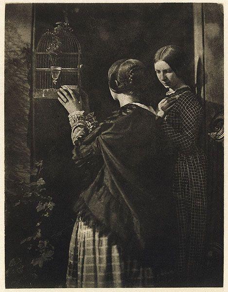 Hill & Adamson: La gabbia per uccelli; 1840