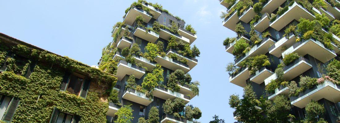 IL BOSCO VERTICALE MILANESE DIVENTA UNA FORESTA IN CINA