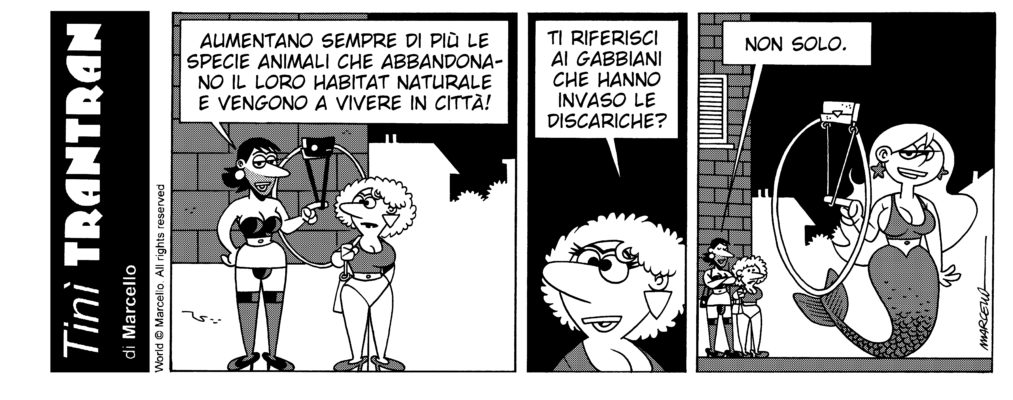 TINÌ TRANTRAN – 91