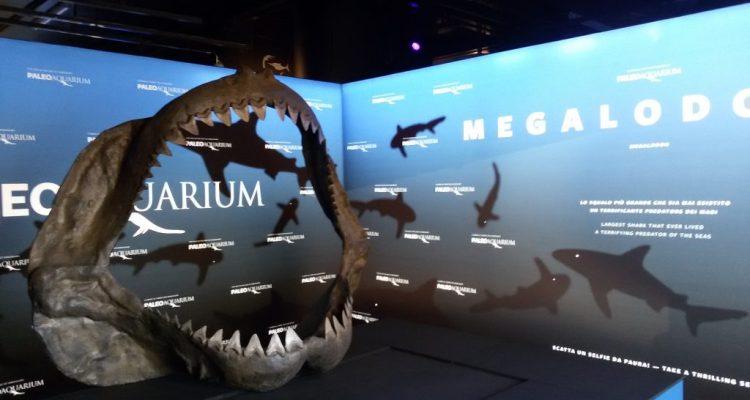 Paleoaquarium di Genova