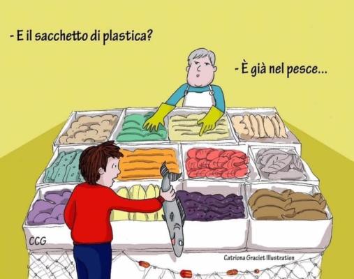 MOMENTO POP – PLASTICA