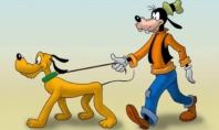 LE CONTRADDIZIONI DEGLI ANIMALI UMANIZZATI DELLA DISNEY
