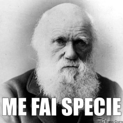 vecchio Darwin